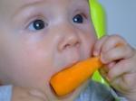 pap morcovior cu cei doi dinti de jos si gingiile de sus
